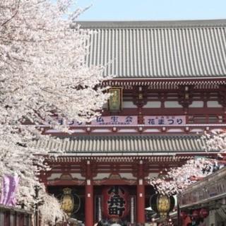 4月7日(土) お花見シーズン!浅草パワースポット巡り!お花見ウォ...