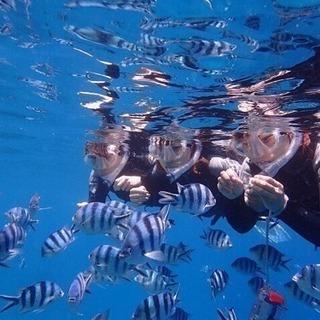 沖縄の綺麗な海で仕事をしてみませんか?