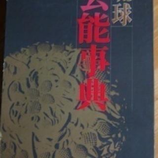 琉球芸能事典