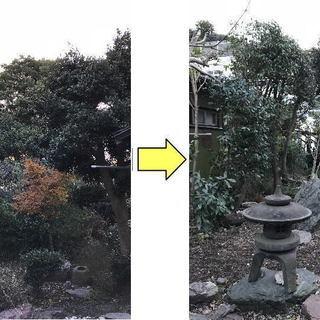 庭木1本からお庭の困ったを解決 お庭の剪定、伐採、草刈り、草むし...