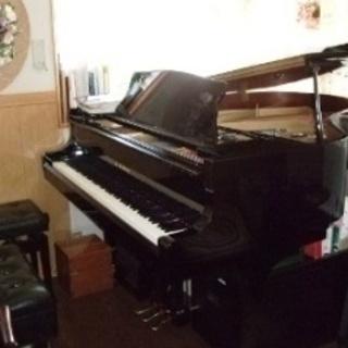 Music Garden ピアノ・...
