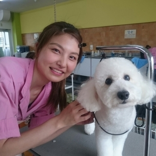 4月生まだまだ間に合います!神戸愛犬美容専門学院