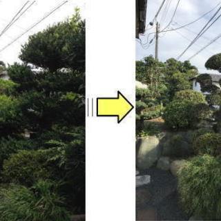 横浜市の庭木剪定/お庭の手入れ 伐採 草むしり 草刈り お…