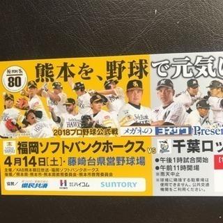 ソフトバンク対ロッテ 熊本藤崎台チケット