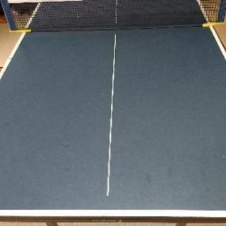 卓球台  ファミリーサイズ