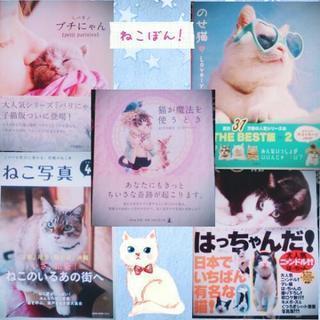 猫の本5冊セット