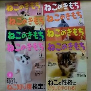 【無料】ねこのきもち雑誌を無料で差し上げます