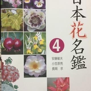 日本花名鑑 4 お値下げ