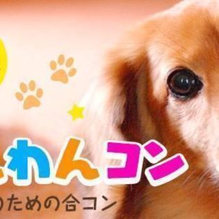 ワンコン ☆4月29日(日)★犬好き集まれ!★愛知★名古屋★岡崎