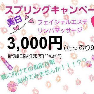2500円‼春のキャンペーン🌹🌹🌹