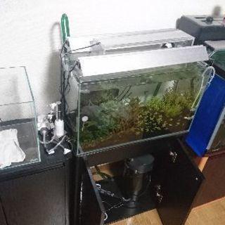 90cm,60cm,45cm水槽セット  熱帯魚