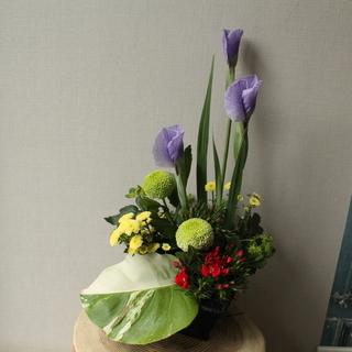 ケーキ屋さんでお花のワークショップ~菖蒲を使った和風アレンジ~4...