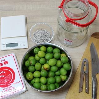 【梅酵素教室】梅のジュースは、梅酵素が一番おすすめです!!