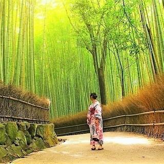 【2人入居、限定1部屋】京都・嵐山で交流しながらシェア生活しませんか?