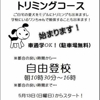 日曜フリータイム制トリミングコースを神戸校・姫路校共に5月13日...
