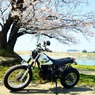 tw200 バイクタイヤ交換