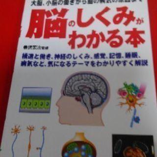 脳のしくみがわかる本