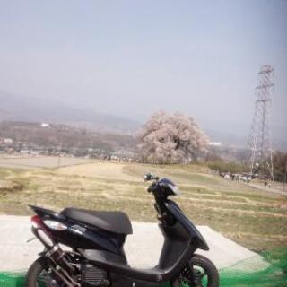 スクーター 50cc ZR sa39j 4スト