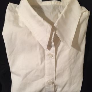 レディース  白シャツ  長袖