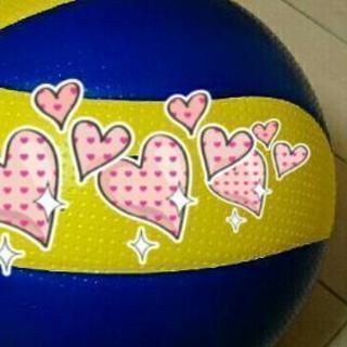 バレーボール(ネット220cm)