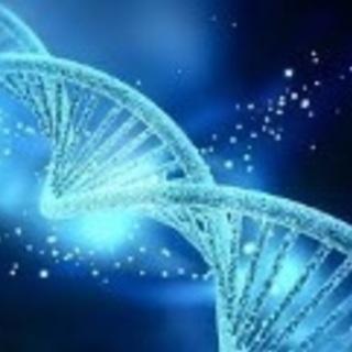 【募集】5月 シータヒーリング®︎基礎DNAセミナー開催!!