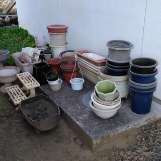 無料 引き取りに来れる方のみ 植木鉢の画像