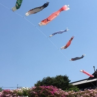 ウォーキング 今週のスケジュール 4/23〜