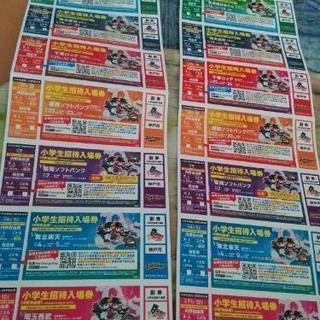 野球観戦チケット(招待入場券)