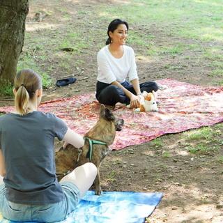 犬と触れ合いながら姿勢を向上させるドッグヨガ@代々木公園