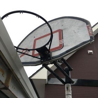 LIFETIME バスケットゴール差し上げます!