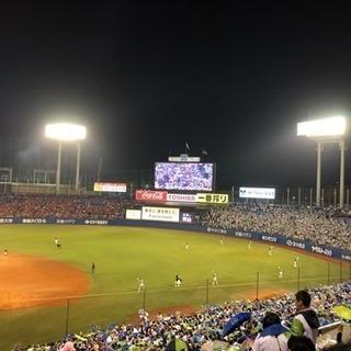 【野球観戦】仲間募集(30代中心)