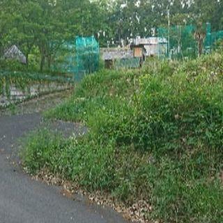 激安販売40万円で地主に!別荘、家庭菜園、資材置き場、用地80坪 ...