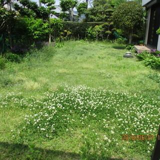 福岡、芝刈り,格安、便利屋、園芸用品レンタル、1000円レンタル