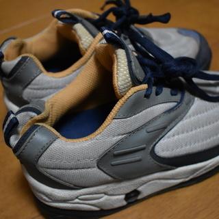 ローラー靴 22cm