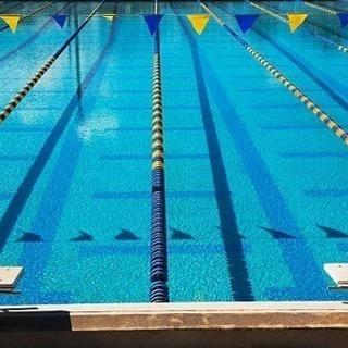 個人レッスン 一緒泳ぎましょう!