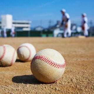 社会人野球・大学野球観戦仲間