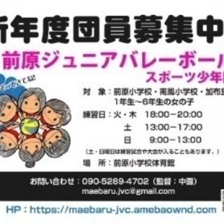 糸島市のジュニアバレーボールチームです。