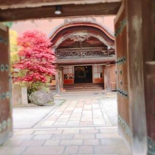 高野山でヨガ.瞑想.精進料理 - 八尾市