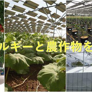 農業による地域ブランディングビジネス☆未経験歓迎☆マーケティング...