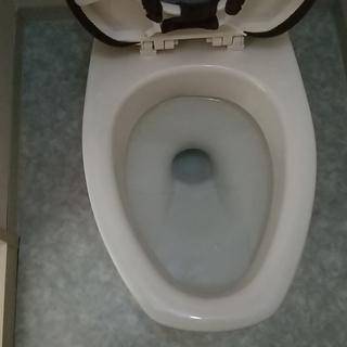 トイレつまり修理を東大阪市、大東市、門真市、大阪市鶴見区でキャン...