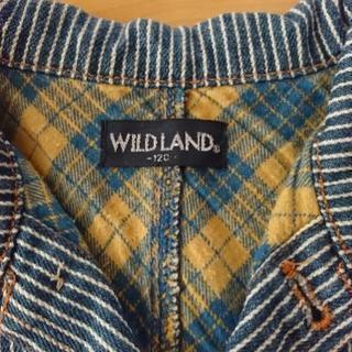 WILD LAND ジャケット