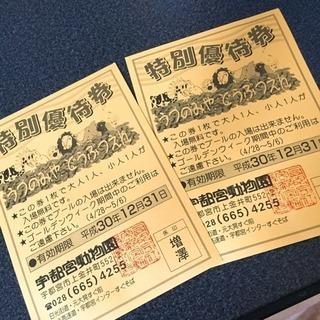 宇都宮動物園 特別優待券 チケット2枚