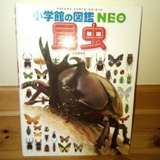 図鑑 昆虫
