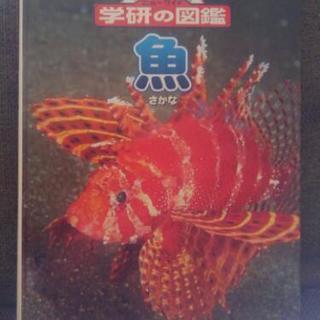 本【魚図鑑】学研