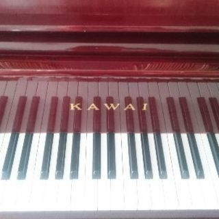 お子様から大人までピアノ教えます♪出張でのレッスンも致します♪ - 音楽