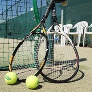 テニス会員募集