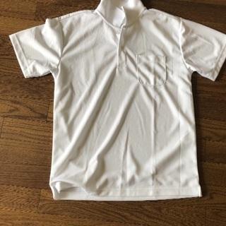 白のポロシャツ3枚 サイズL