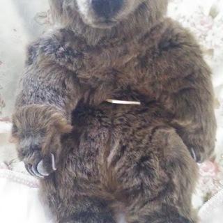 ドイツ・kesen社の熊の「ぬいぐるみです。