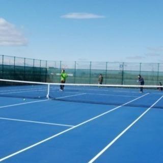 硬式テニスサークルメンバー募集!🤗