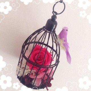 (66)幸せの鳥かごアレンジ♪バレンタインフラワー♡